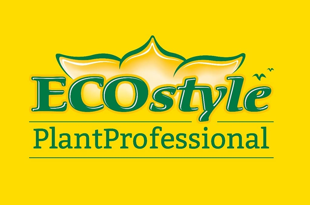 eco style in an - photo #49