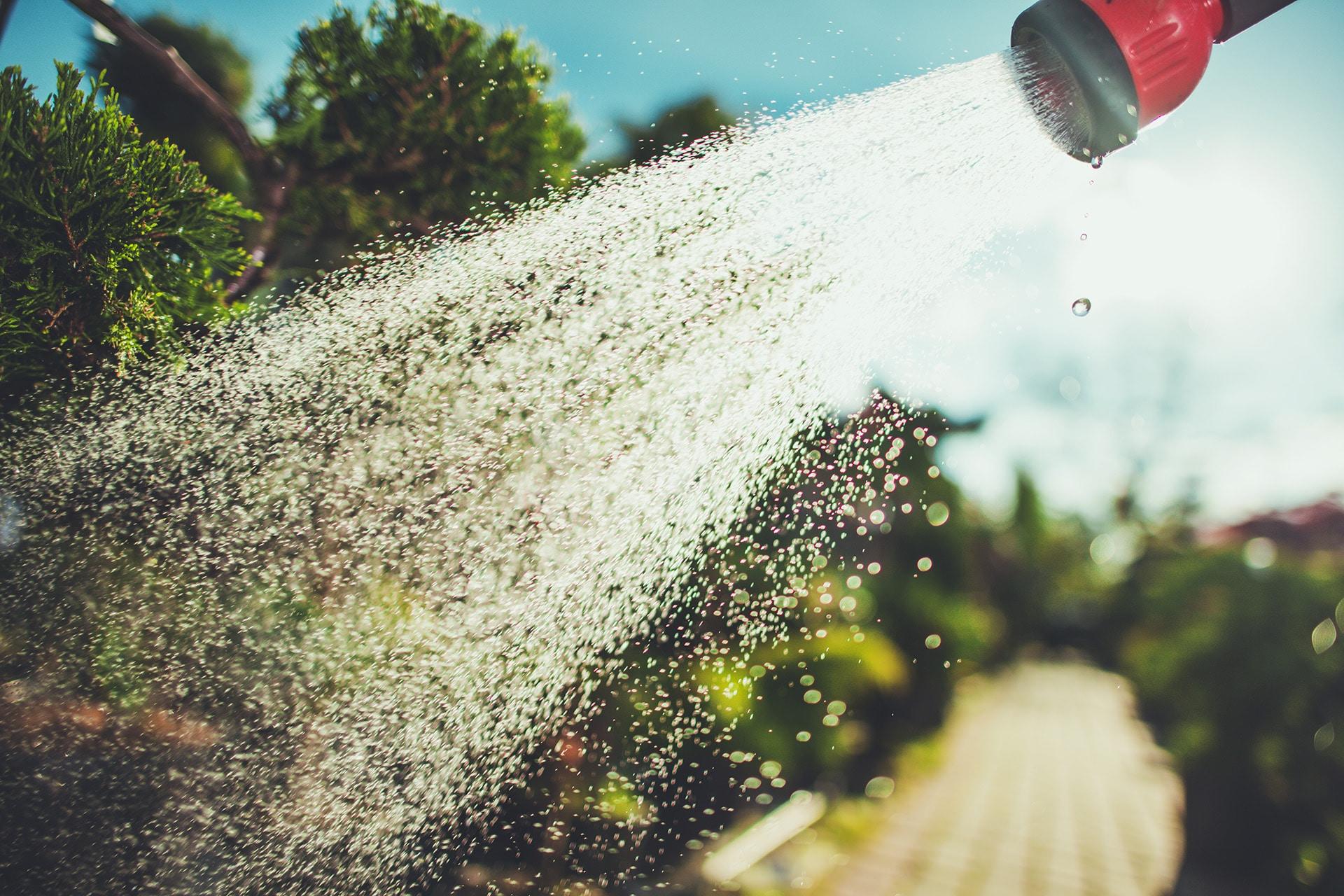 De tuin water geven