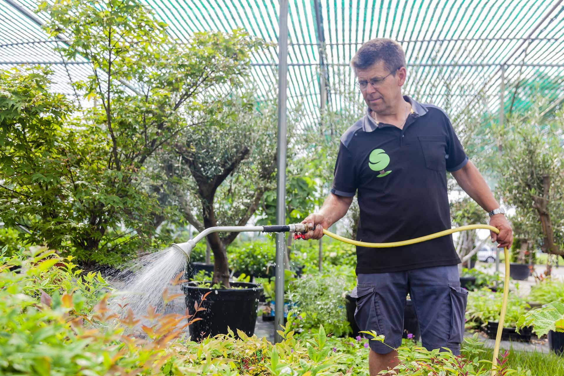 Gert-Jan Schonenberg geeft zijn planten water